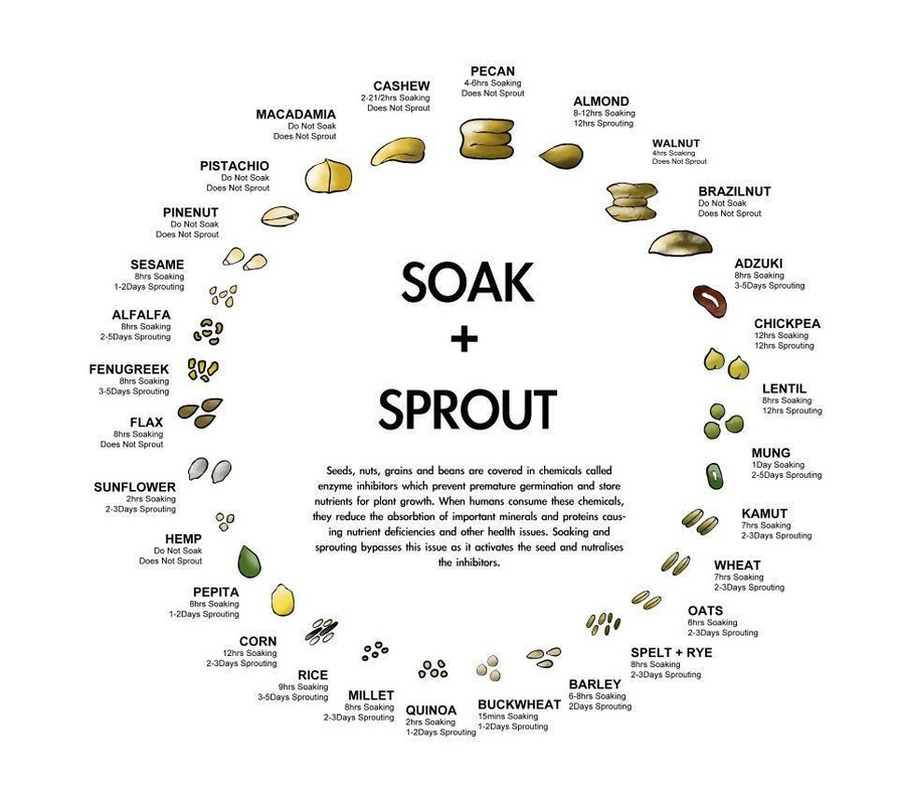 soak_and_sprout