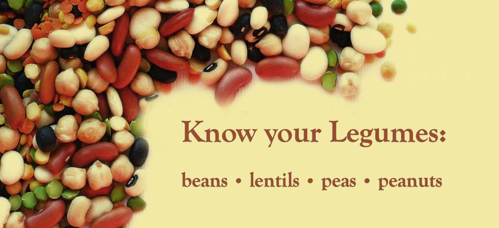 list-of-legumes