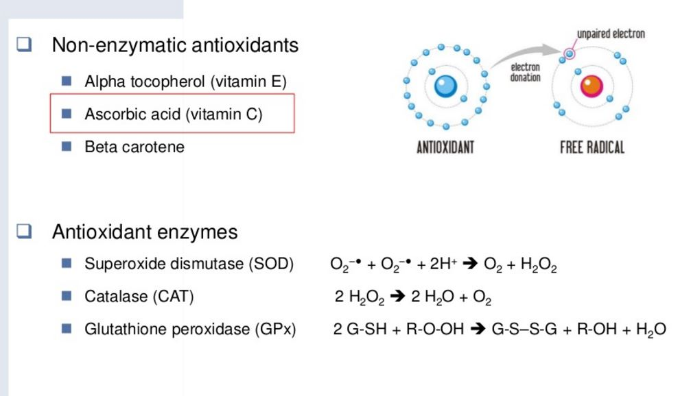 ROS-antioxidants