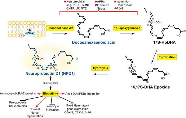 Lipid-News,-Figure-1